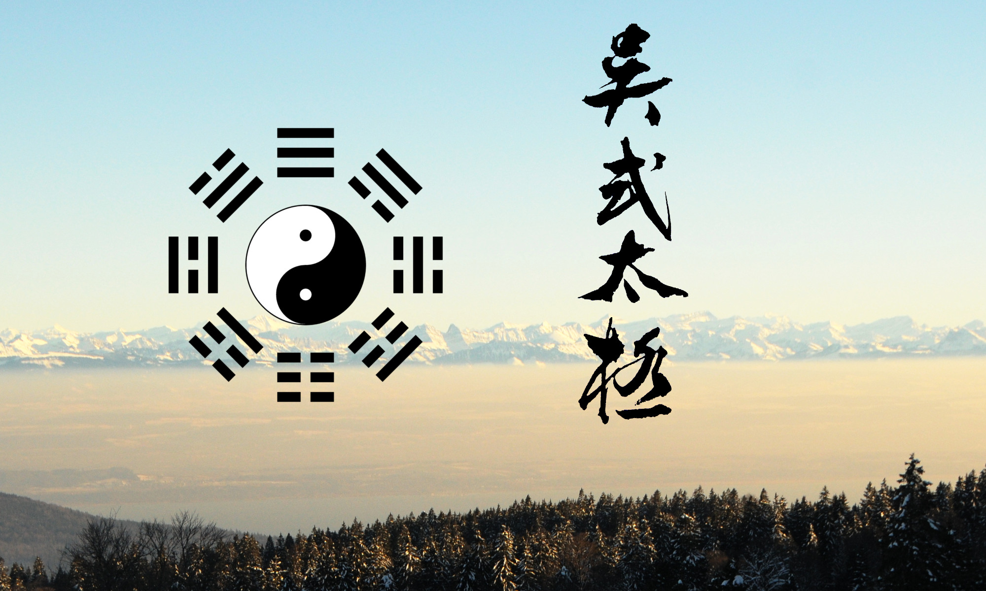 Taiji du Style Wu