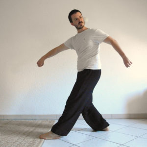 qigong cinq animaux ours